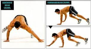 What Muscle Do Bench Press Work Upper Body Circuit Bear Crawl For Bigger Arm And Shoulder