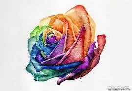 Pencil Sketch Of Flower Vase Pencil Flower Ink Pencil Flower Sketch Line Art Background Hand