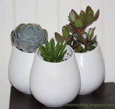 Ikea Outdoor Planters by 33 Best Market St Plants Images On Pinterest Plants Gardening