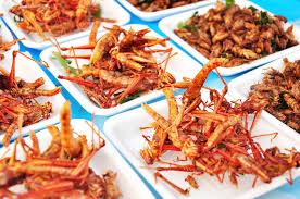 insectes dans la cuisine les insectes sont ils l alimentation du futur réponse à tout
