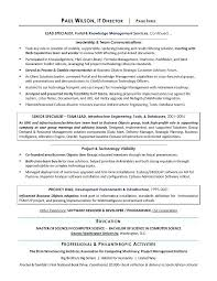 project management resume pdf here are director of it resume click here to download this