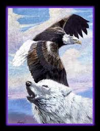 eagle and wolf animals wolf and