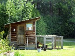 33 backyard chicken coop ideas