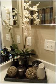 Tropical Decor Bathroom Modern Platform Bed Modern Bathroom With An Earthy