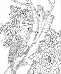 detailed animal coloring pages eliolera