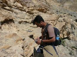 Geologist Resume Geologist Sample Resume