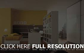 Blank Bedroom Wall Ideas Room Divider Partition Wall Ideas For Bedroom Cecaabfce Surripui