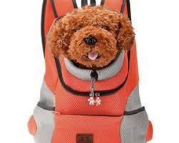 Comfortable Dog Comfortable Dog Carrier Shop