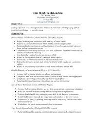 resume job description for homemaker resume sample personal loan
