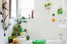 ideas on how to decorate a bathroom plants in small bathroom decorating ideas accessories high