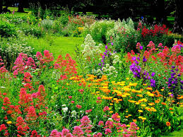 image of garden flowers more time enjoying gardens less time working in them wedel u0027s