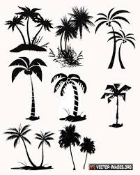 palm tree vector palm tree vector in ai format silhouettes