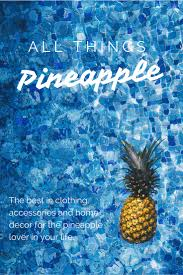 Pineapple Home Decor by All Things Pineapple Megan U0026 Wendy An Orange County Lifestyle Blog