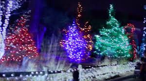 when do the zoo lights end detroit zoo wild lights 2016 youtube
