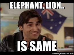 Wog Memes - elephant lion is same wog boy meme generator