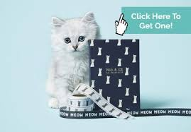 photograph of papeterie lacoste com paul and joe s stationery line is a must for cat