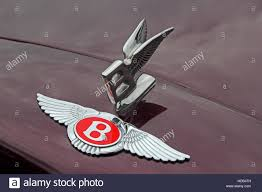 red bentley red bentley badge and flying b mascot on front of maroon car stock