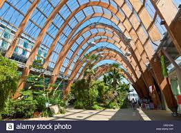 interior of winter gardens sheffield city centre sheffield south