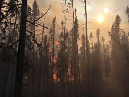 Alaska Fires Permafrost by Agencies Weigh Sending Firefighters South Amid Increasing Risk In