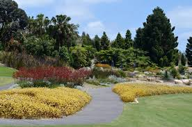The Australian Botanic Garden Australian Botanic Garden Mount Annan