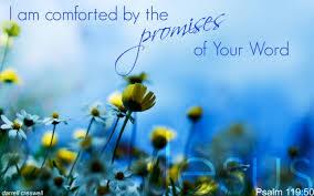 Bible Verse On Comfort Comfort In God U0027s Word U2013 Inspirational Bible Verses U2013 Psalm 119
