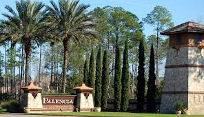 palencia real estate st johns county florida