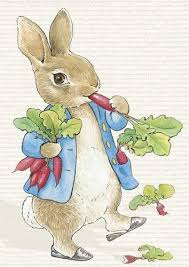 rabbit by beatrix potter beatrix potter rabbit poster picture photo decor print