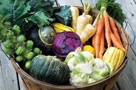 start a fall u0026 winter vegetable garden