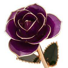 Rose Dipped In Gold 24k Gold Dipped Purple Rose R83970047 Riddle U0027s Jewelry