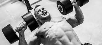 the ultimate bench press and chest enhancer u2014 advanced human
