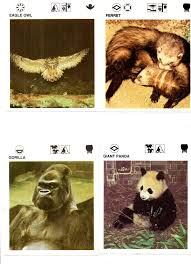 wildlife treasury cards 24 best pop culture images on pop culture fruit and
