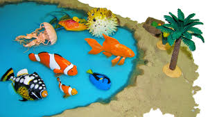 8 sea animals safari incredible creatures marine animal toys youtube
