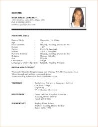 format for resume resume template format resume sles format professional resume