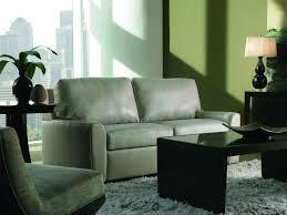 Comfortable Sleeper Sofas Comfort Sleeper Sofa From American Leather Industrial Revolution