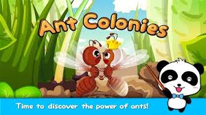 ant downloader apk ant colonies for 8 8 7 31 apk for pc free
