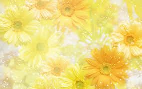 Best Yellow Yellow Flowers Wallpapers Yellow Flowers Wallpapers Free Download