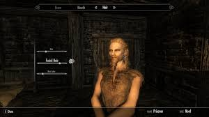 use all the hair styles at skyrim nexus mods and community
