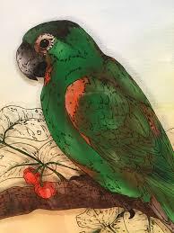 parrot home decor parrot green parrot bird oil painting tropical parrot home decor