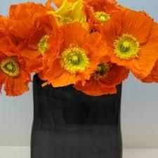 november flowers flowers in season november bridalguide