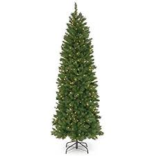 national tree 7 5 foot pennington fir pencil tree with