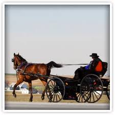 Elk Forge Bed And Breakfast Pennsylvania Dutch Amish Country Hershey Pa Lancaster Strasburg