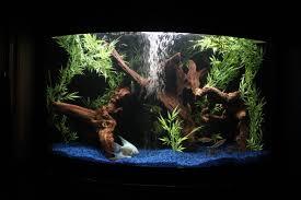 Aquascape Aquarium Designs Home Design Wonderful Aquascape Aquarium Designs E2 80 94