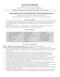 project manager resume information technology project manager resume resume for study