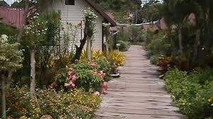 pp casita bungalows koh phi phi don thailand youtube