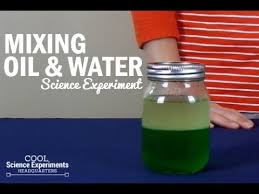 mixing oil u0026 water science experiment youtube