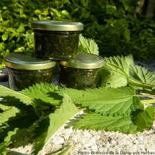 cuisine plantes sauvages balade et atelier gratuit sur les plantes sauvages à romainville
