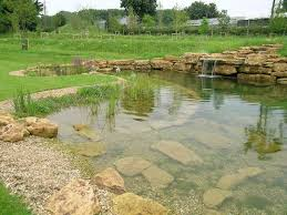 101 best swimming ponds idea gallery done by ponds inc of