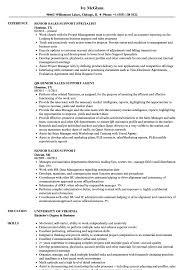 sle resume for business analysts duties of executor of trust senior sales support resume sles velvet jobs
