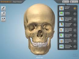 3d Head Anatomy Bonebox Skull Viewer App For Ipad Is A 3d Medical Education Tool