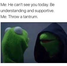 Tantrum Meme - me he can t see you today be understanding and supportive me throw